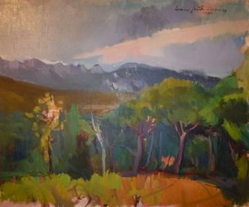 Müller-Linow, Landschaft bei Sablet, Öl/Lwd., 1976, 54x65 cm