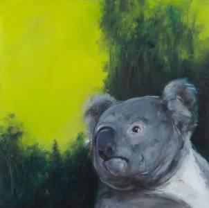 Koala, 2010, 60x60 cm