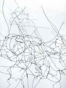 Brigitte Schwacke, La porte cachée (Detail), legierter Draht, 2017, 220x85x23 cm
