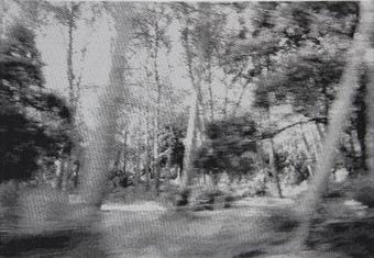 Dazwischen, Jacquardgewebe, 2011, 31x45 cm